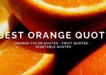 best orange quotes